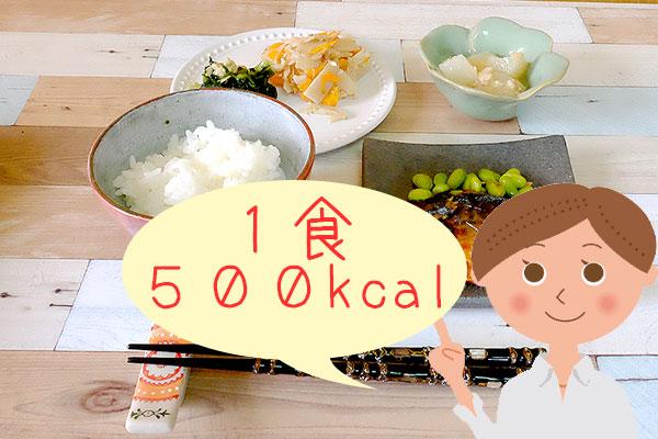 ダイエットするためには1食500キロカロリー!